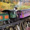Coq Railway Mt. Washington